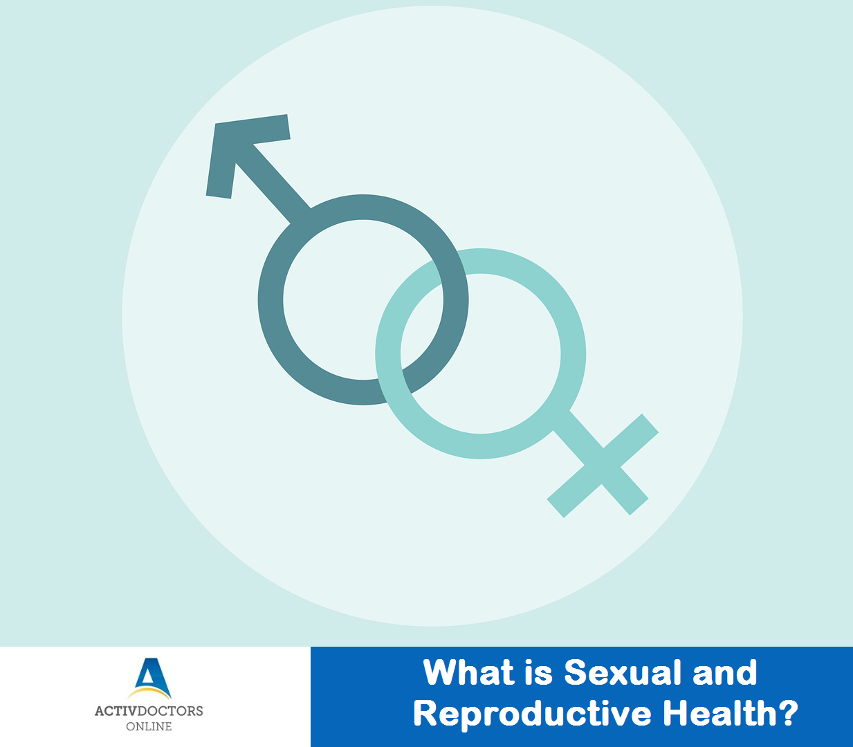 What is Sexual and Reproductive Health?
