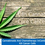 Cannabinoids And Chemotherapy In Combination Kill Cancer Cells