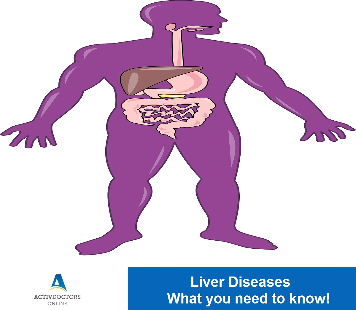 Liver Diseases – What you need to know!